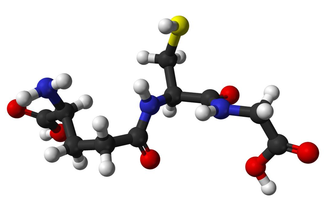 3D model of glutathione molecule