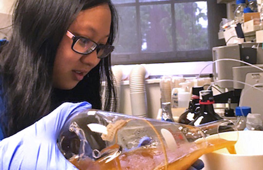 Katie Chen pouring chemicals in lab