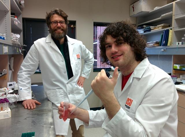 Ryan A. Mehl and Robert J. Blizzard working in lab