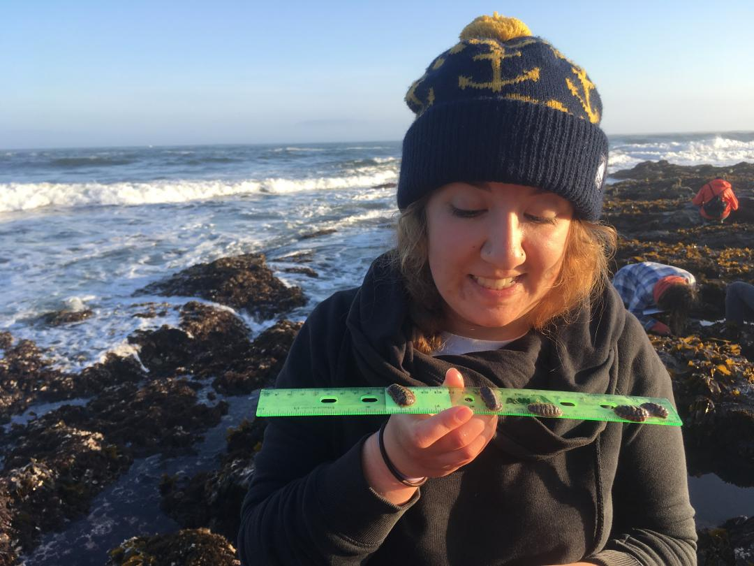 Sonora Meiling measures ocean creatures on the Oregon Coast