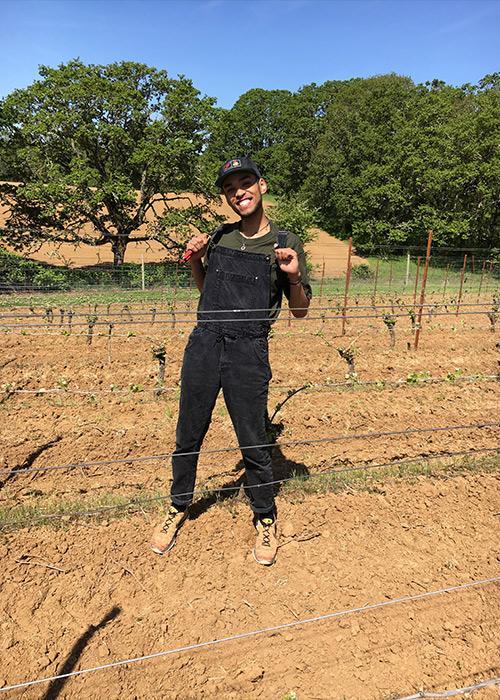 OSU Zoology senior volunteering in vineyard