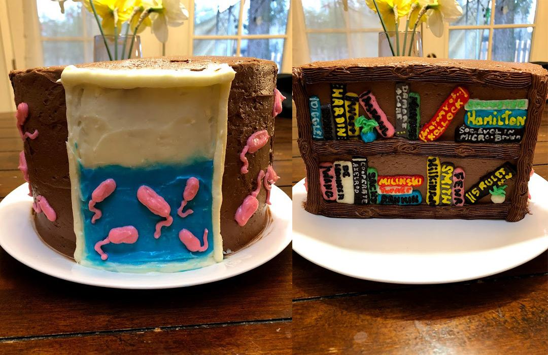 A cake decorated to look like a chemostat
