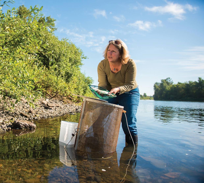 Jerri Bartholomew receiving samples in river