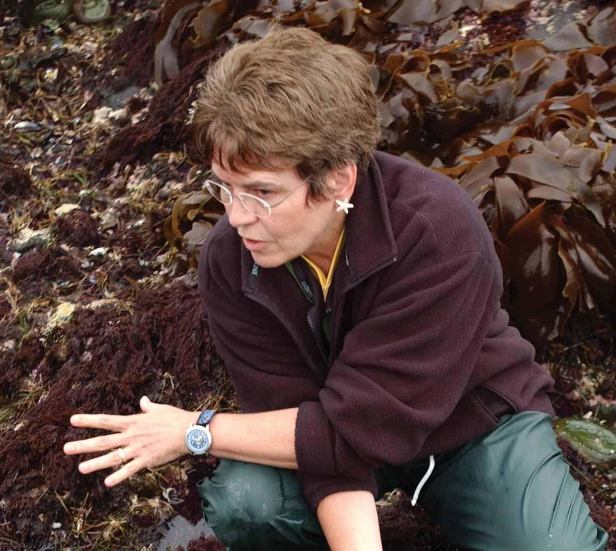 Jane Lubchenco sitting in seaweed and urchins