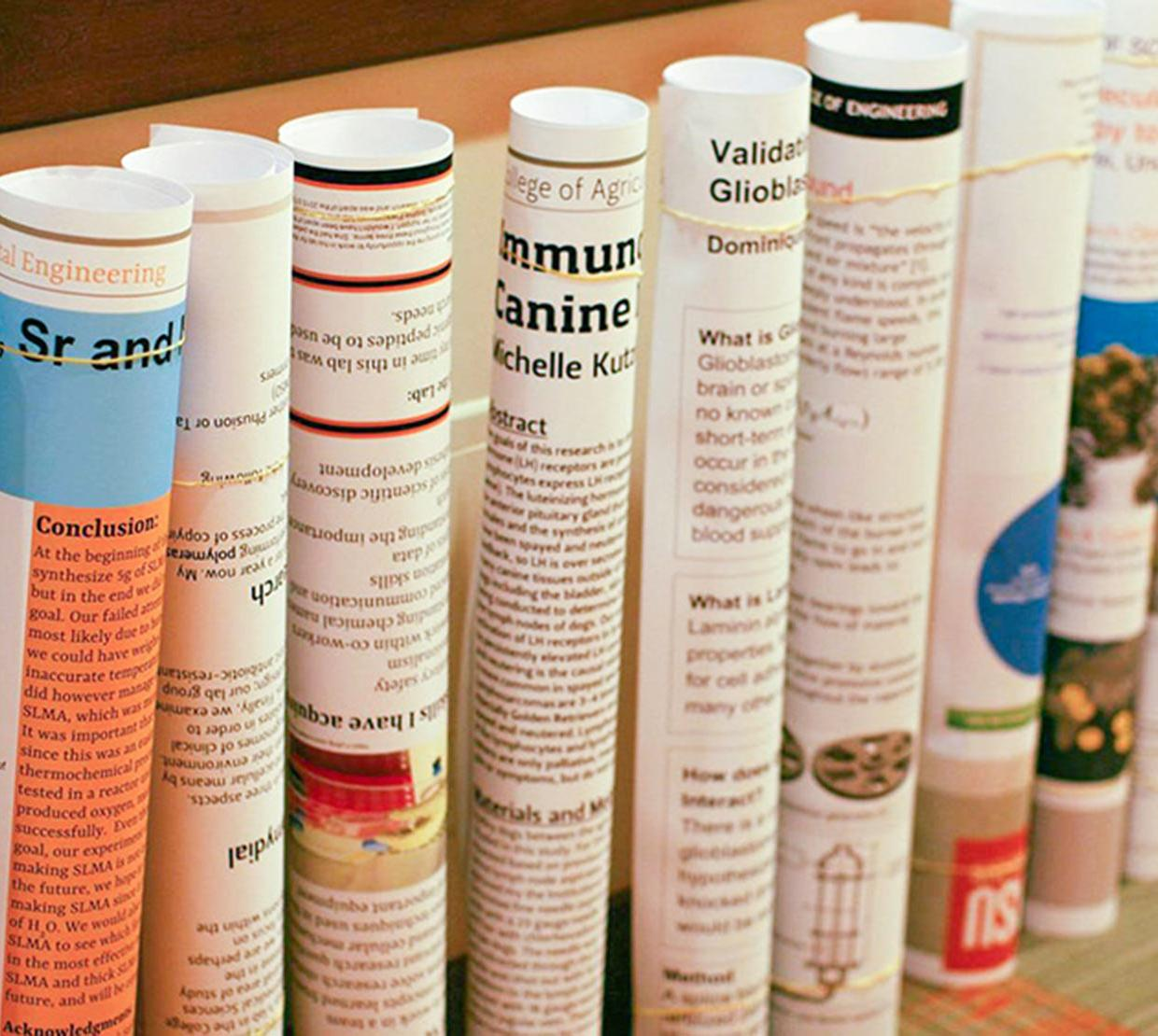 Row of rolled up STEM research posters