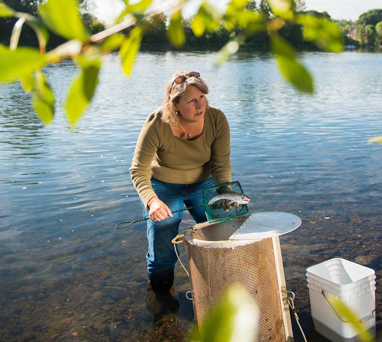Jerri Bartholomew gathering samples from river
