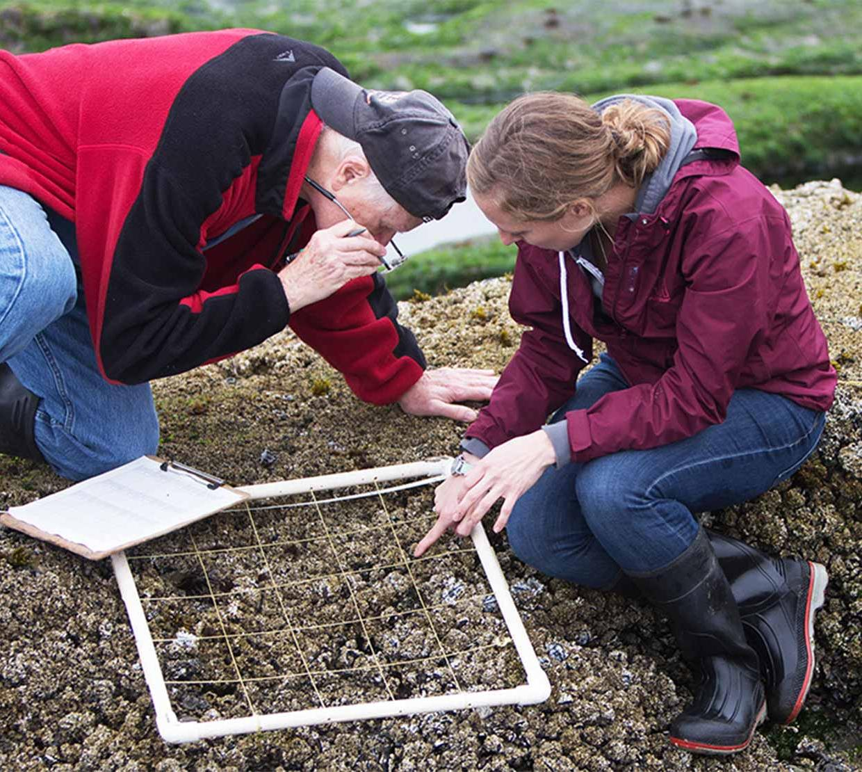 student and mentor studying section of soil