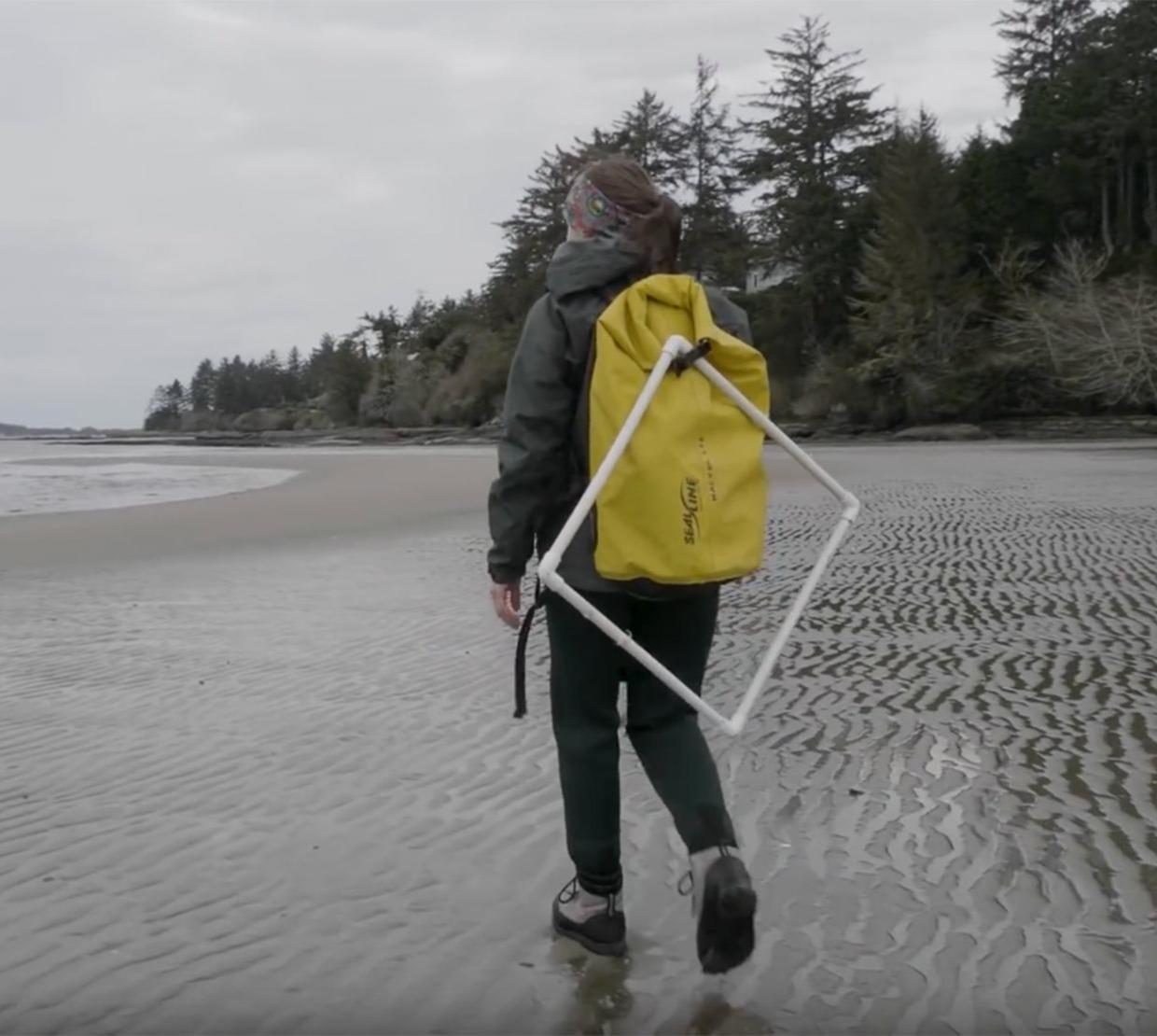 marine researcher walking on cloudy beach carrying hiking and research gear