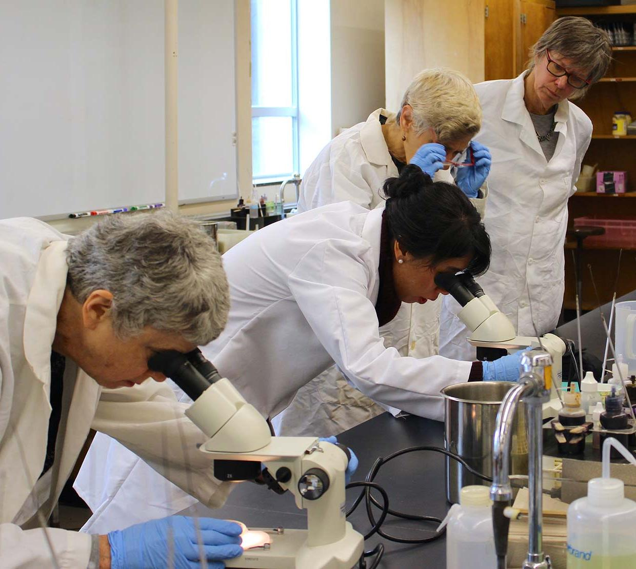 female scientists looking into microscopes in lab