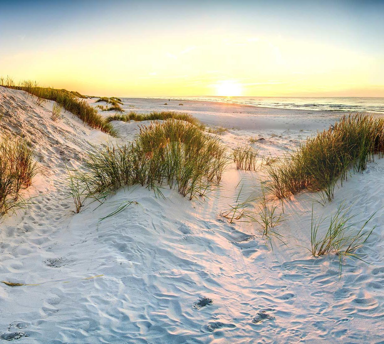 Oregon coast sand dunes on beach during sunset