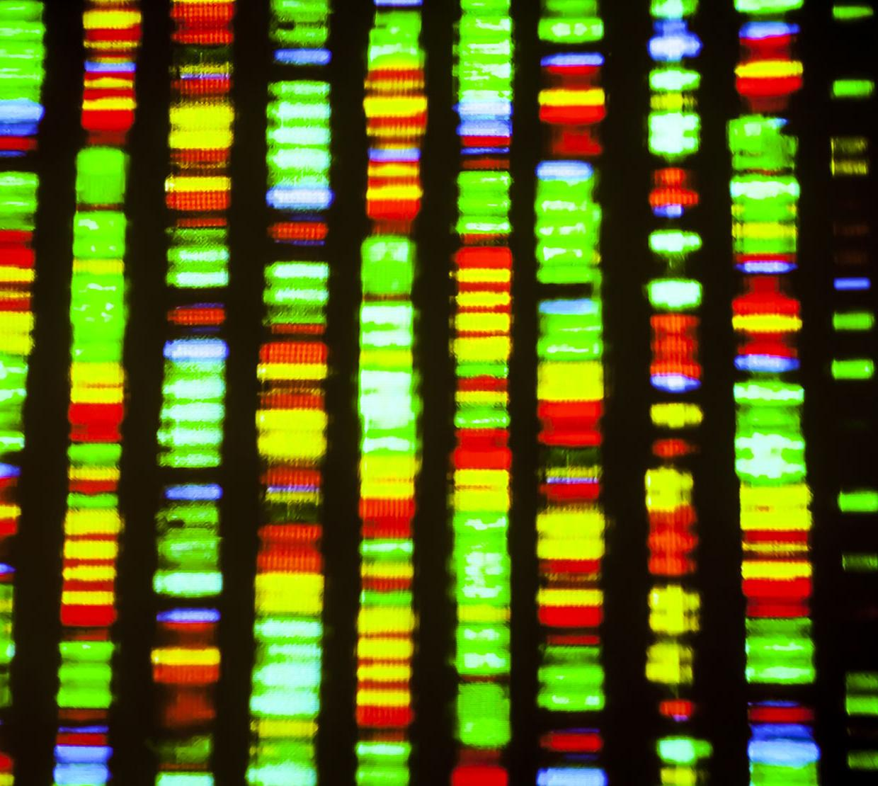 colorful RNA and protein DNA sequencing
