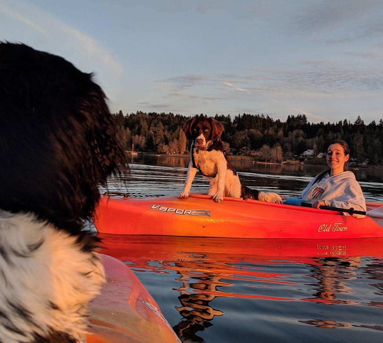 Brittany Lasher in a kayak on a river with dogs.