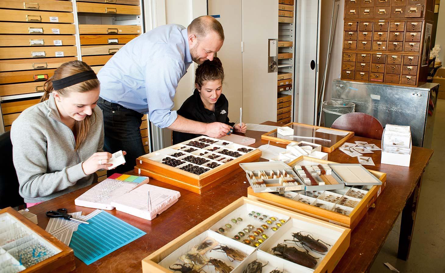 Chris Marshall and students with OSU Arthropod collection