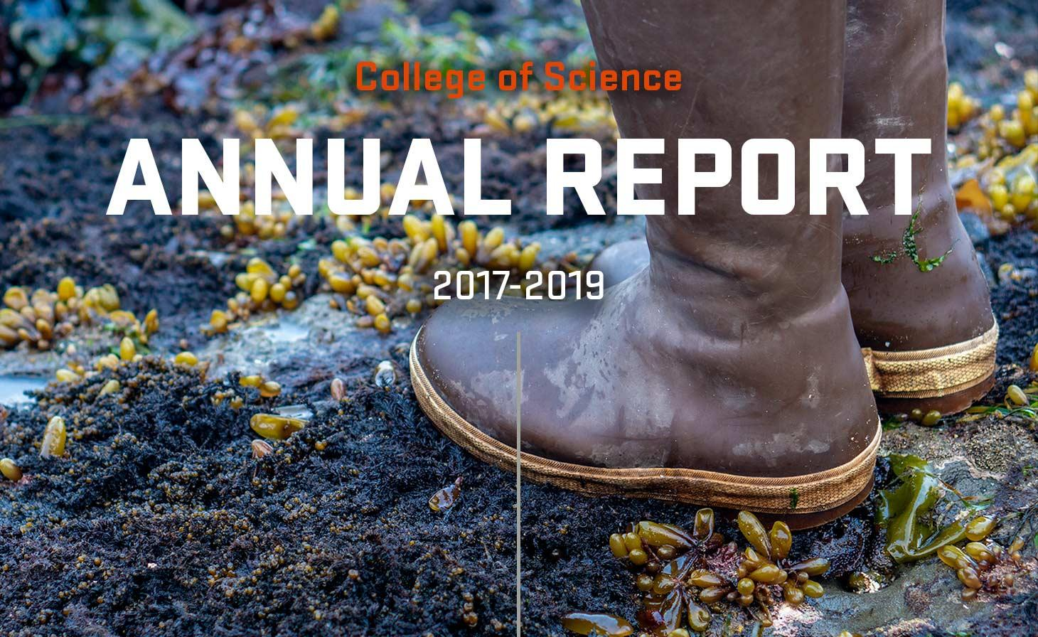 Annual Report 2017-2019 cover graphic of title above image of boots on ocean shore