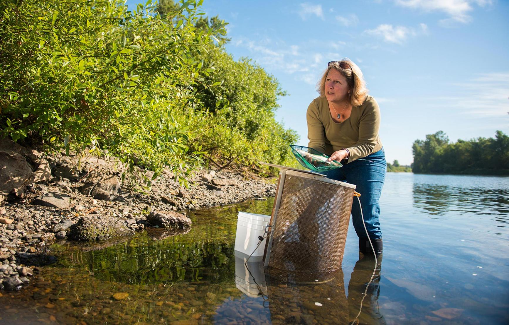 Jerri Bartholomew gathering samples from river