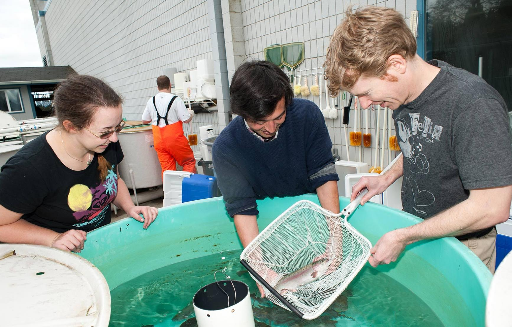 students working with salmon outside of lab