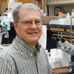 Bruce Geller in microbiology lab
