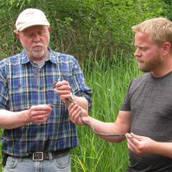 Robert Mason holding garter snake with colleague in field