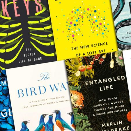 Science-themed novels lined up in an angled grid