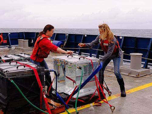 Two scientists on board a boat at sea