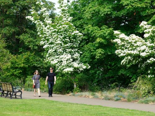 Couple walking through Corvallis waterfront walkways