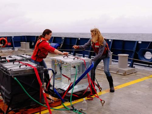 OSU marine researchers out on the boat