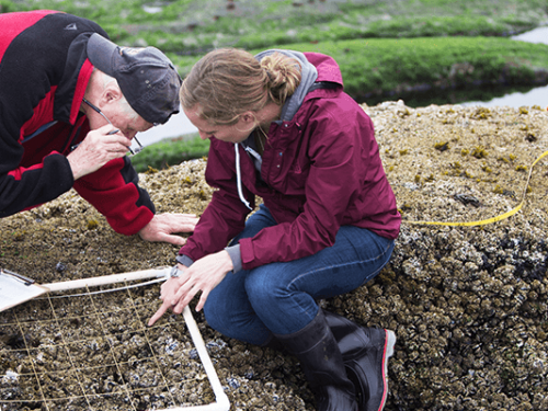 professor and female student looking at soil samples