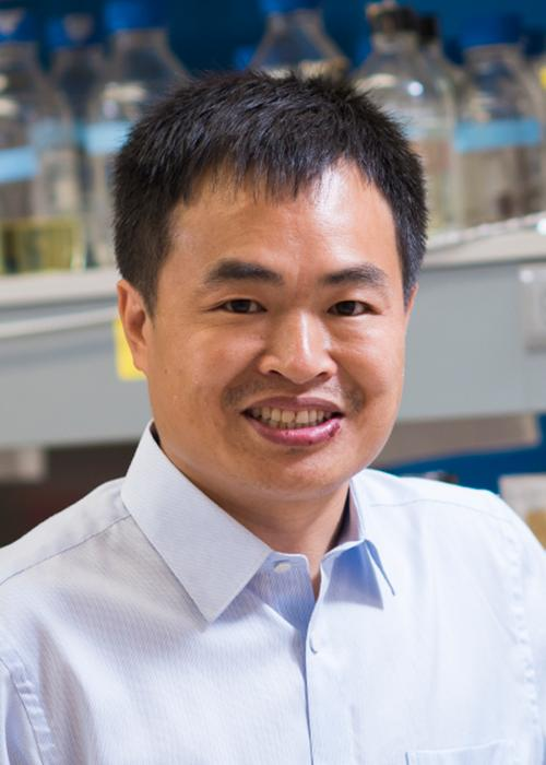 Weihong Qui standing in lab space
