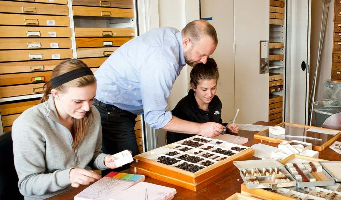 Chris Marshall and student analyzing insect collection