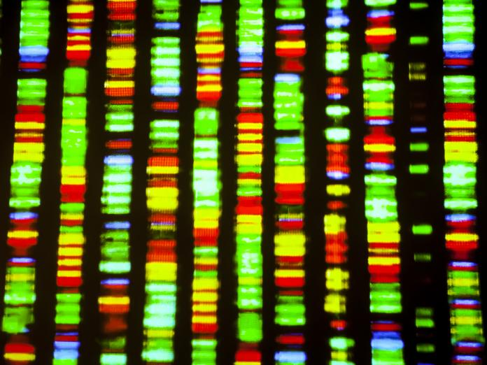 RNA and protein DNA sequencing