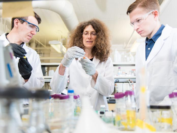 May Nyman mentoring two students in lab