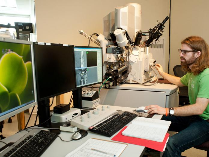 Student working on computers in Electron Microscope Facility