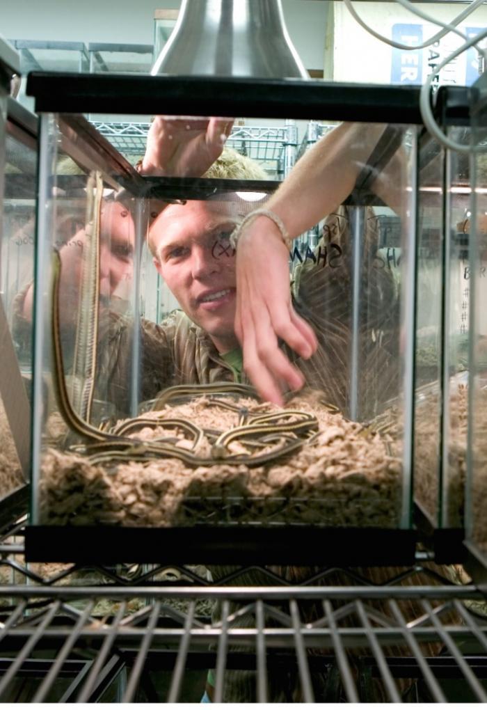 Mason Web handling snake in tank