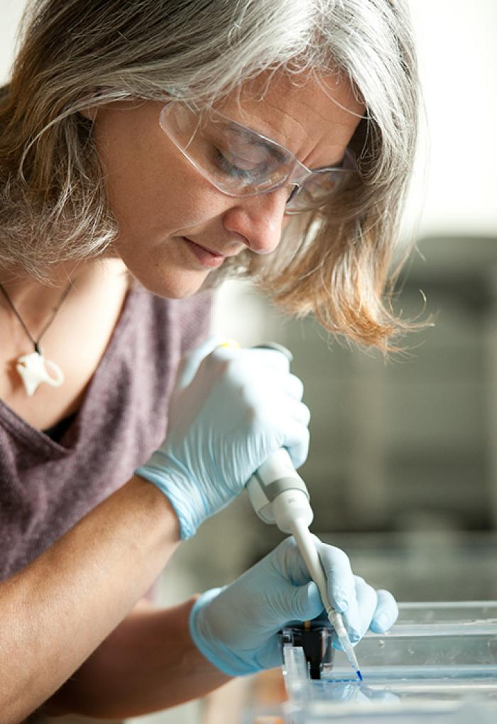 Rebecca Vega-Thurber disbursing samples in lab