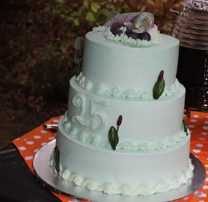 three tiered cake decorated with salmon