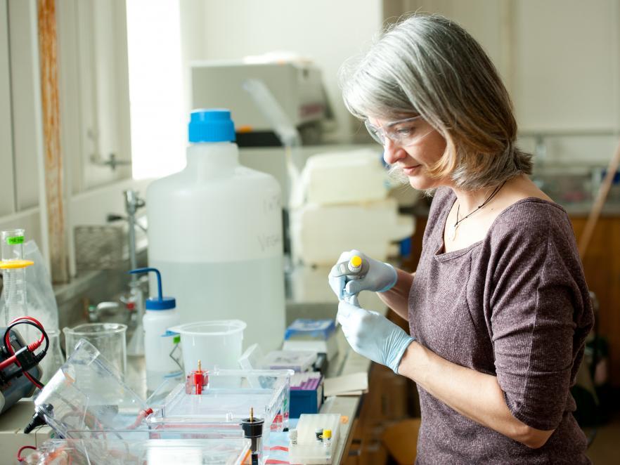 Rebecca Vega Thurber working in her lab