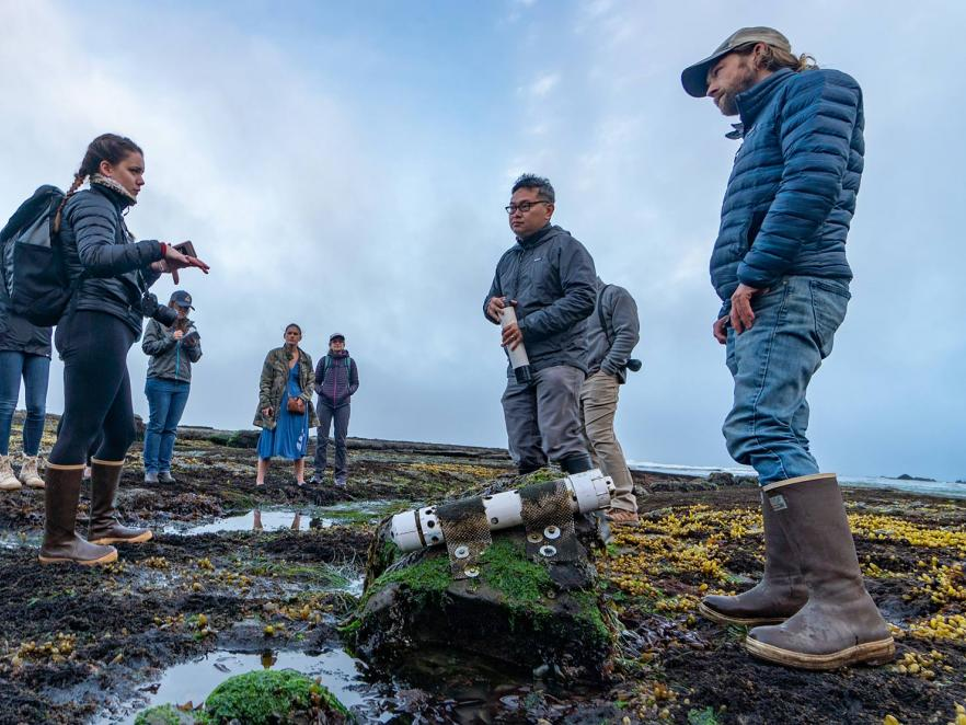 Francis Chan and research team looking at Tidepools in Newport