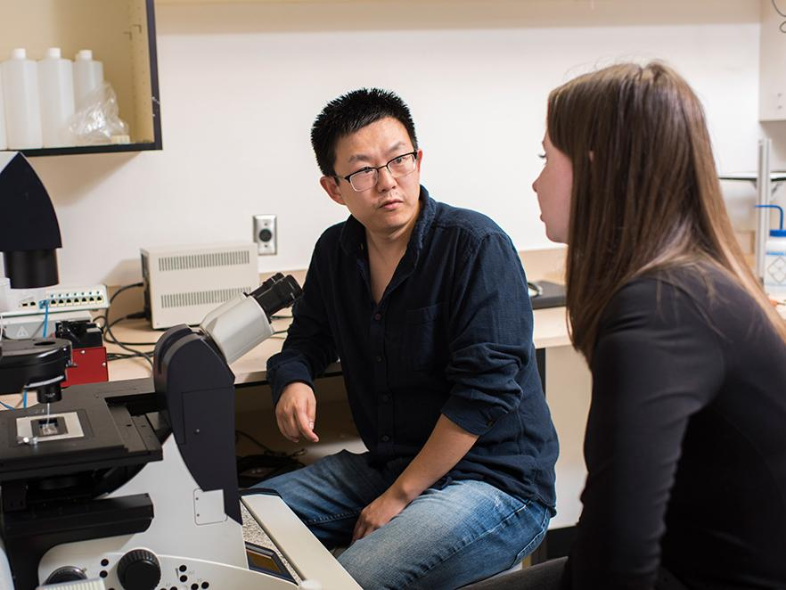 Bo Sun talking with student in lab