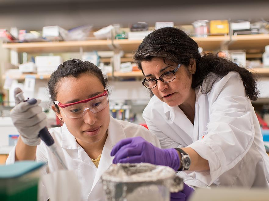 Viviana Perez analyzing samples with student in lab